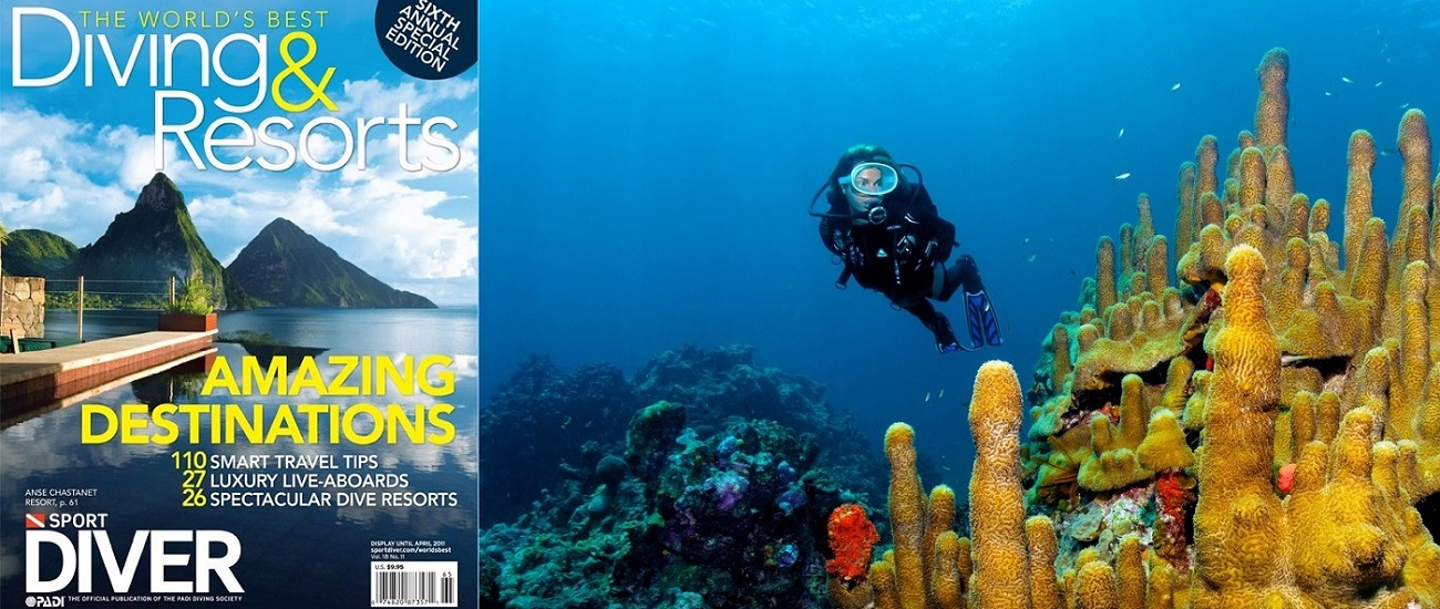 <a href='diving.html'>EXPERIENCE WORLD CLASS DIVING AT SCUBA ST LUCIA</a>